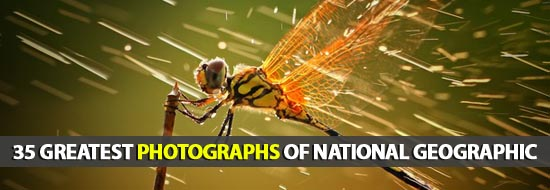 35 Greatest Photographs of National Geographic