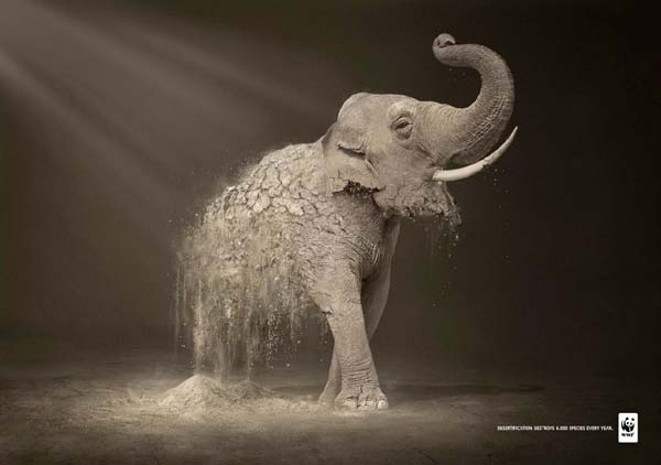 Most popular award winning print advertisements 21
