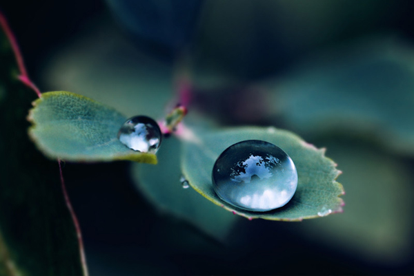 Beautiful Water Drop Photography 13