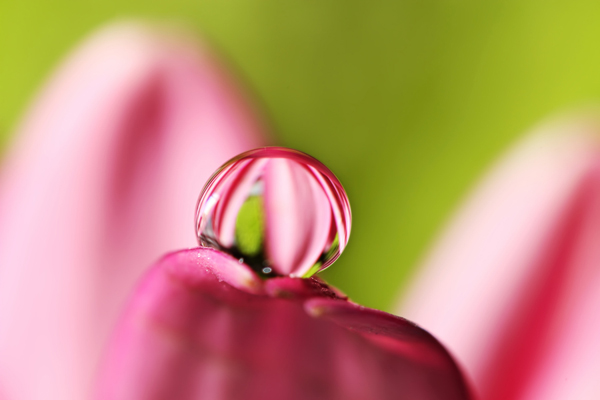 Beautiful Water Drop Photography 17