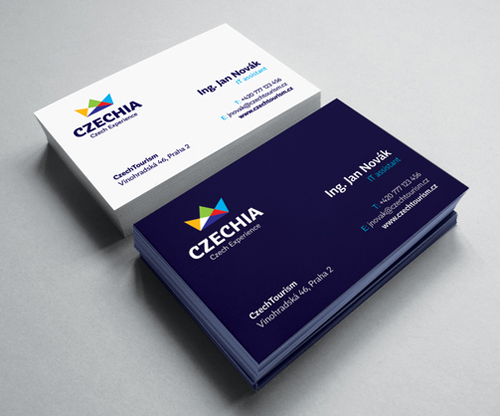 Professional business card design 19