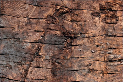 High Qualtity Wood Textures-10