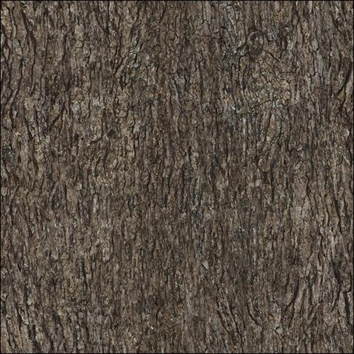High Qualtity Wood Textures 15. 50 Seamless High Quality Wood Textures   Pattern and Texture