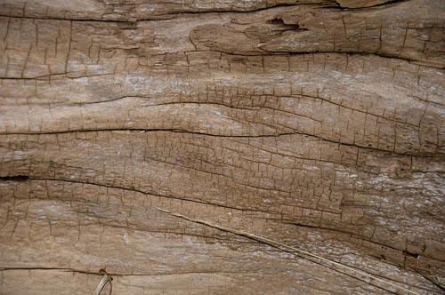 High Qualtity Wood Textures-8