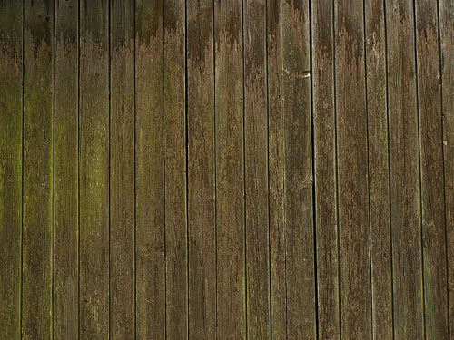 High Qualtity Wood Textures 9. 50 Seamless High Quality Wood Textures   Pattern and Texture
