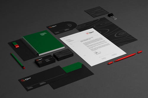Branding, Visual Identity and Logo Ddesigns 21-1