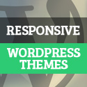 Post Thumbnail of New Premium Responsive WordPress Themes