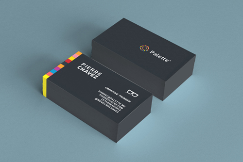 Palette / Visual Identity Business card