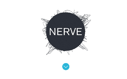 Nerve Collective One Page Website Design
