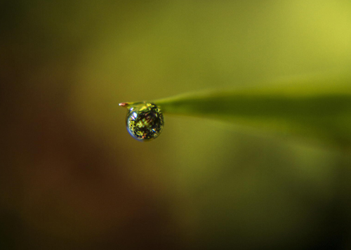 Water Drop Photography - 16