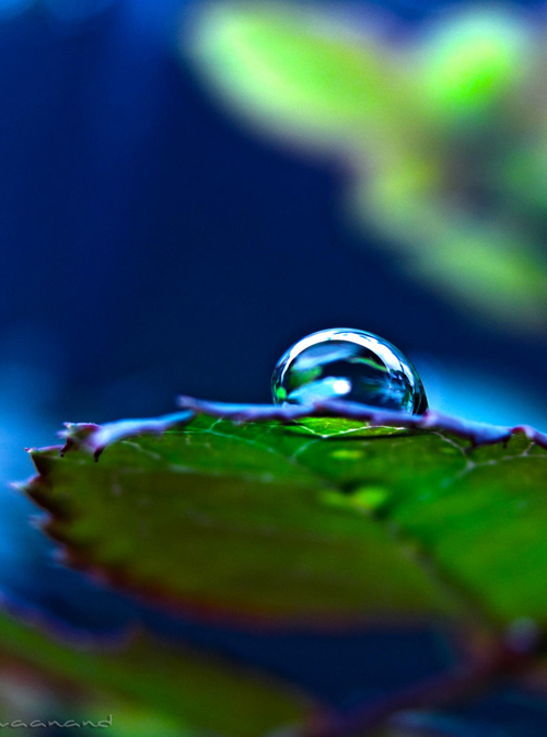 Water Drop Photography - 37