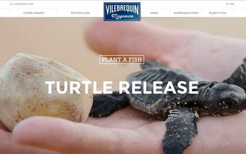 Responsive Website Design Vilebrequin Magazine