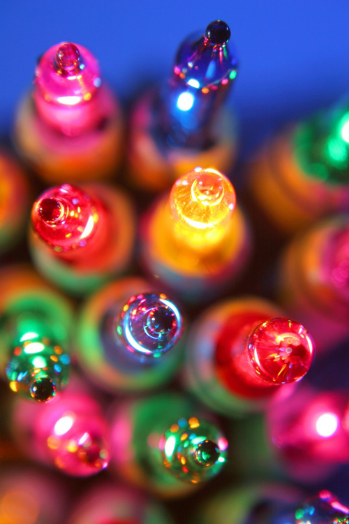 Twinkle Lights Photography-14