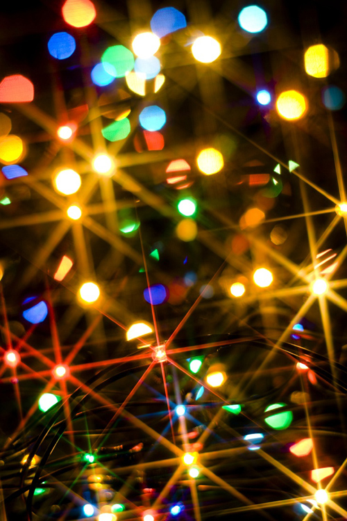 Twinkle Lights Photography-20