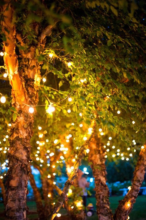 Twinkle Lights Photography-30