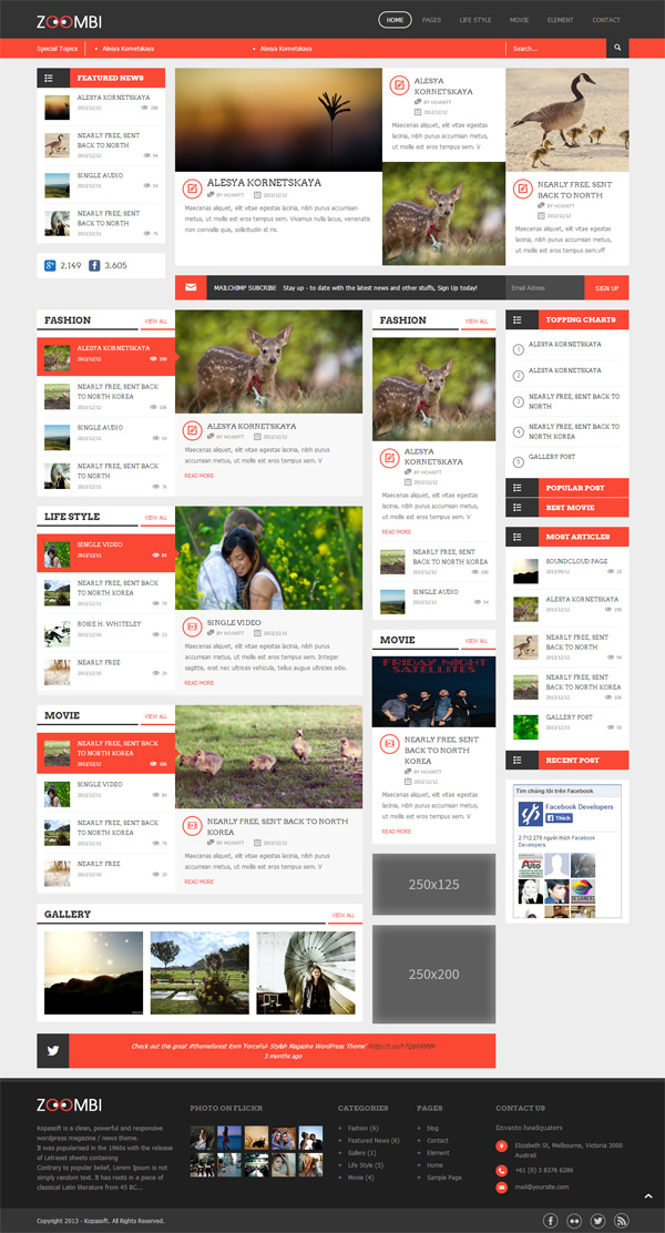 Zoombi- Magazine WordPress theme