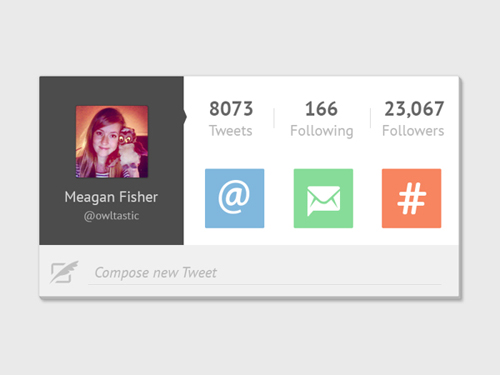 Twitter Widget User Interface