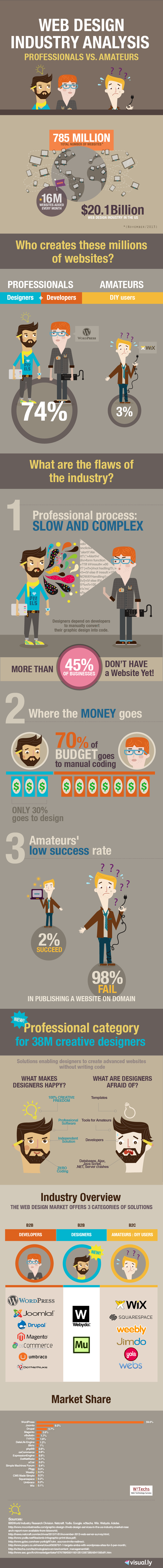 Web Design Industry Analysis professionals vs. amateurs Infographic