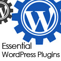 Post Thumbnail of 5 Essential WordPress Plugins for Bloggers and Freelancers