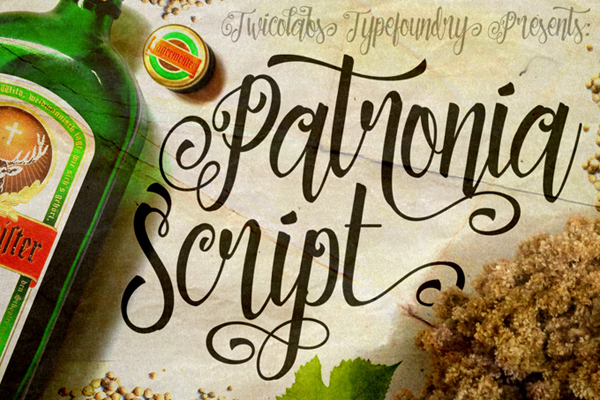 Patronia Script is a brush-lettering inspired script typeface