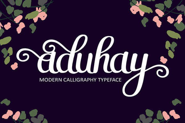 Aduhay is a hand made painted typeface