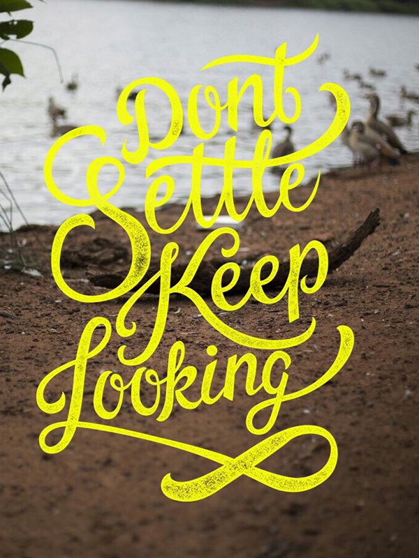 Don't Settle Keep Looking