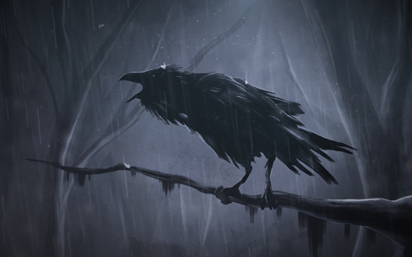 How to Draw Wild Crow in Dark Scene