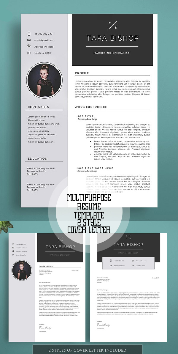 new professional cv    resume templates with cover letter