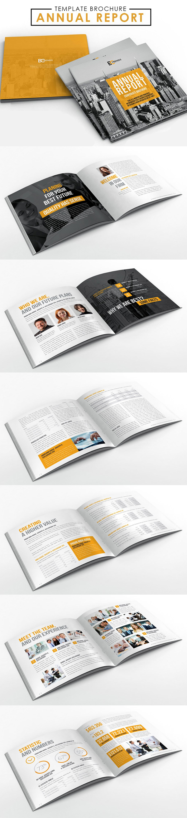 2017 Annual Report Brochure Template