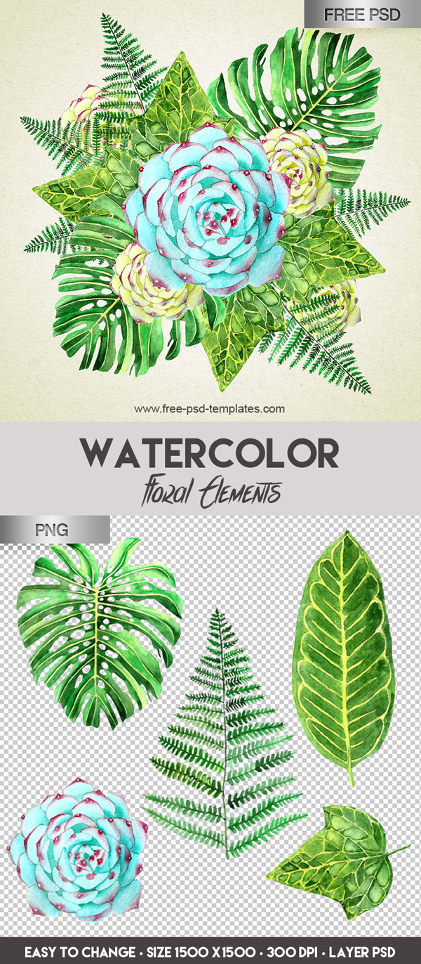 Free Watercolor Floral Elements PSD