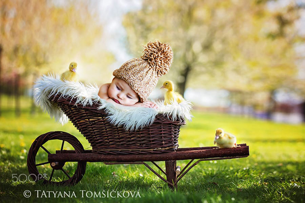 Cute Newborn Baby Photography - 21