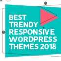 Post thumbnail of 21 Best Trendy Responsive WordPress Themes