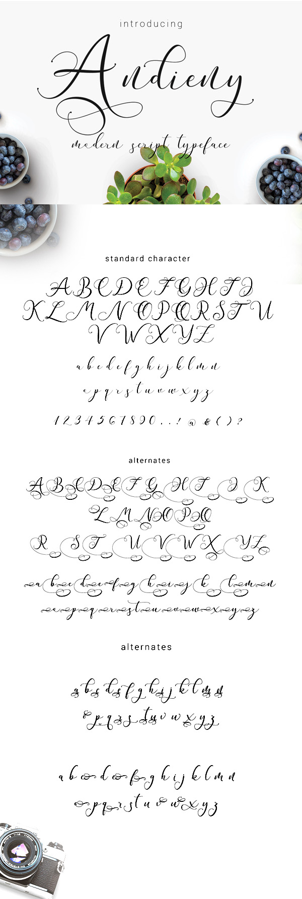 Andieny  Free Script Font