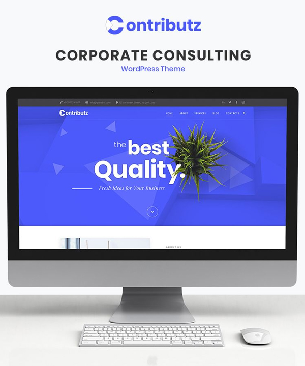Contributz - Corporate Consulting Elementor WordPress Theme