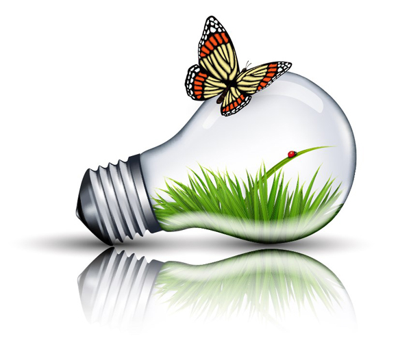 How to Create an Eco Bulb and Butterfly Illustration in Adobe Illustrator