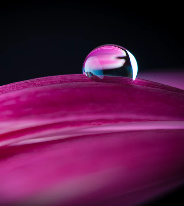 Beautiful Examples Of Water Drop Photography - 24