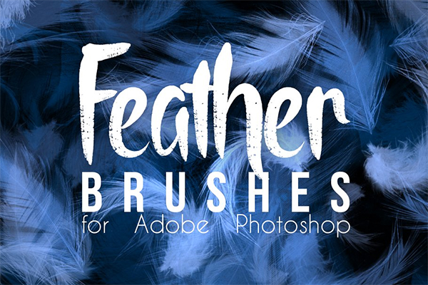 Real Feather Photoshop Brushes