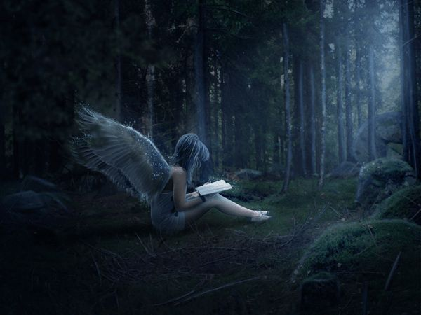 Create a Mystical Night Forest Scene with an Angel