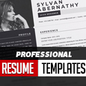 Post thumbnail of Professional Resume Templates Of 2020