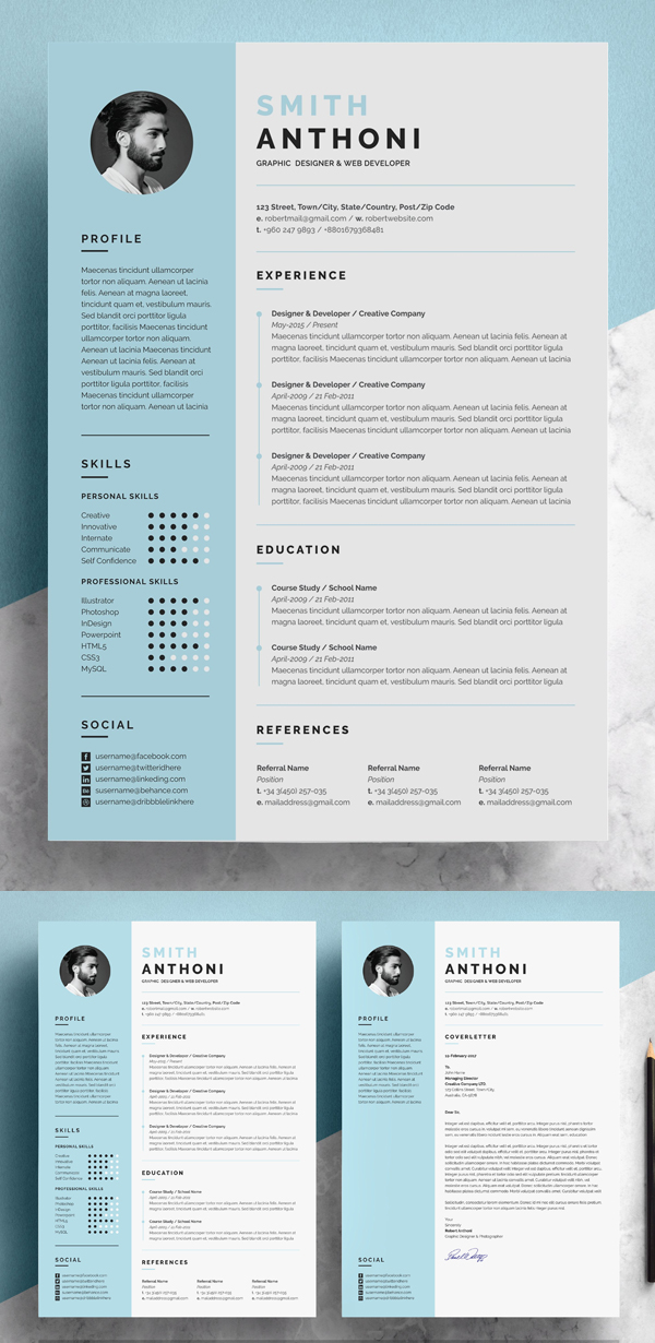Clean Resume 2 Pages