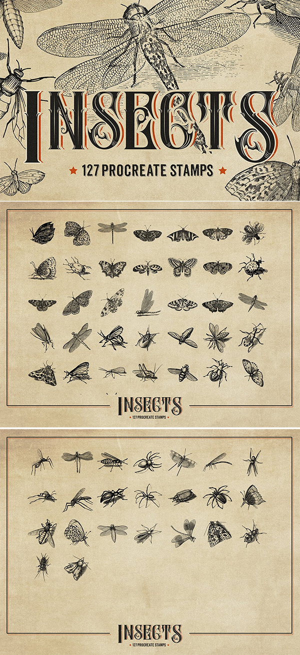 127 Procreate Insects Stems Brushes