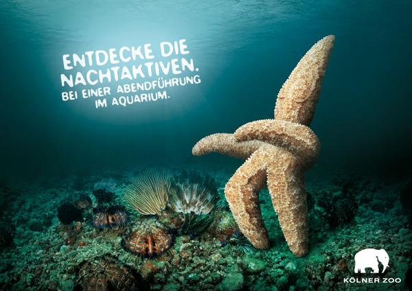 Creative Advertisement: Inspiring Creative Ads Around the World