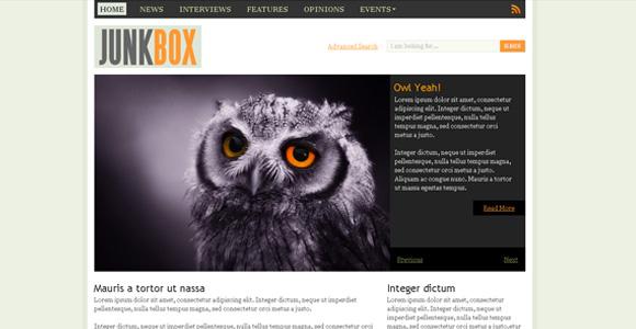 30 Free Premium CSS/XHTML Website Templates