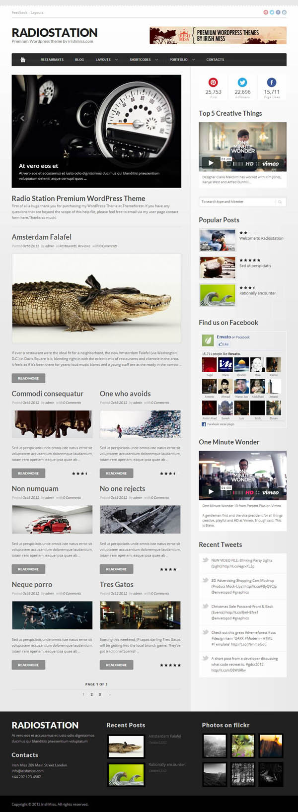 Top Premium News and Magazine Responsive WordPress Themes - 9
