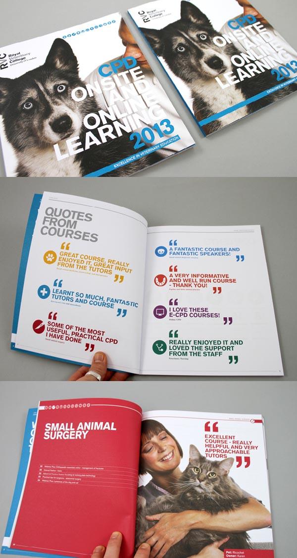Brochure Designs 2013 - 10