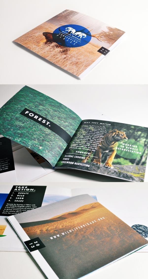 Brochure Designs 2013 - 2