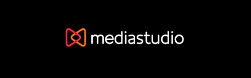 Professional business logo design 1