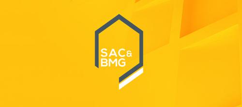 Professional business logo design 17