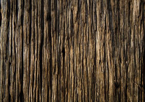 High Qualtity Wood Textures-20