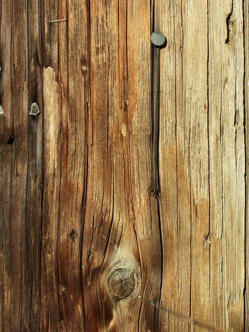 High Qualtity Wood Textures-29